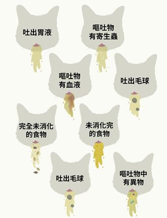 了解貓星人腸胃 嘔吐物警示貓咪健康